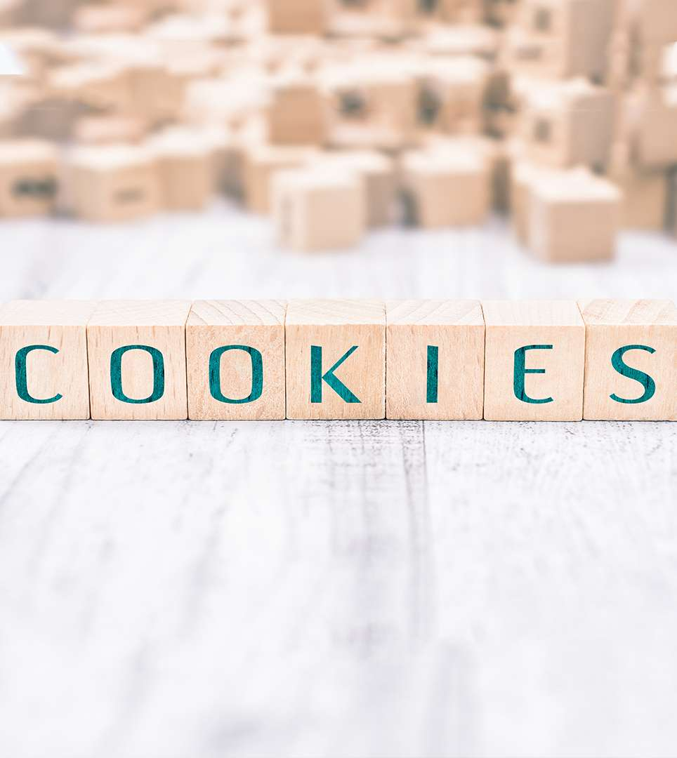 BUENA VISTA INN WEBSITE COOKIE POLICY