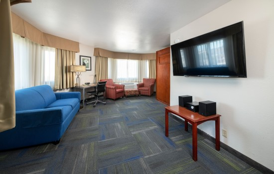 Buena Vista Inn - Well Appointed Suites